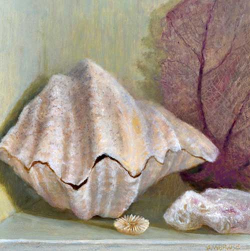 Oil painting of giant clam shell by Daniel Ambrose