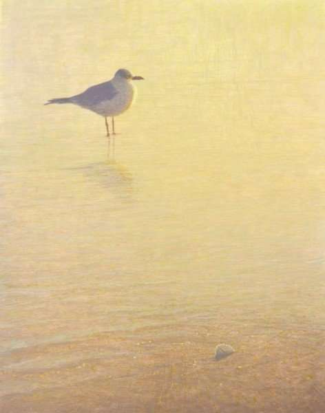 Pawleys Gold, egg tempera painting of a seagull by Daniel Ambrose