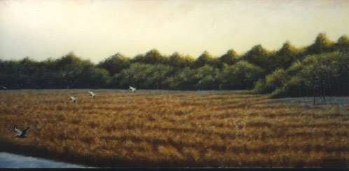 Pelicans Over Bulow Marsh, 1992. Egg tempera painting by Daniel Ambrose