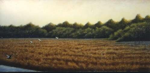 Pelicans Over Bulow Marsh, 1992. Egg tempera painting by Daniel Ambrose