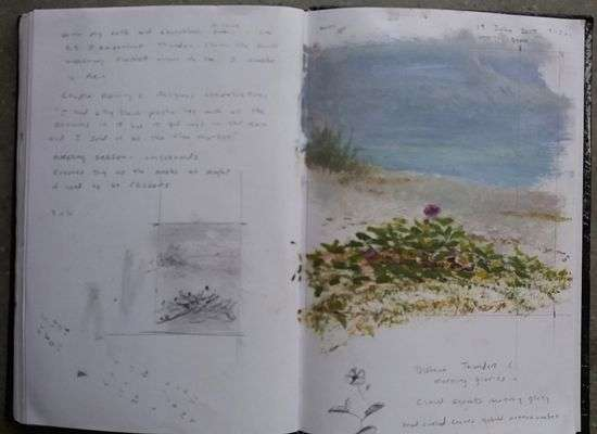 Daniel Ambrose artist sketchbook. Venice, Fl. beach