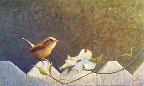Spring Visitor: A Painting About Respect. Egg tempera painting of a Carolina Wren