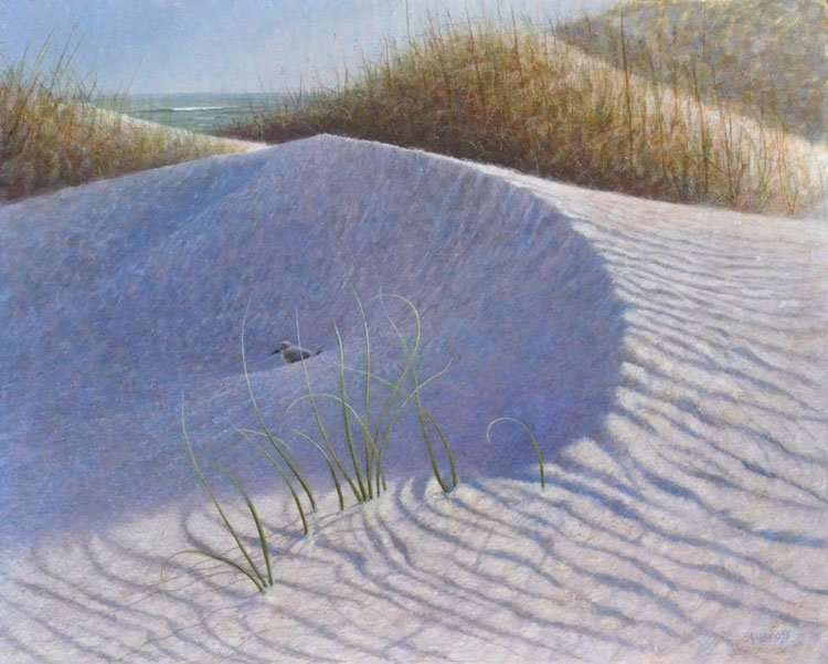 Shelter, egg tempera painting of bird resting in a dune shadow, by Daniel Ambrose