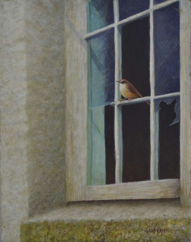 Egg tempera painting of Carolina Wren perched in broken window of abandoned schoolhouse