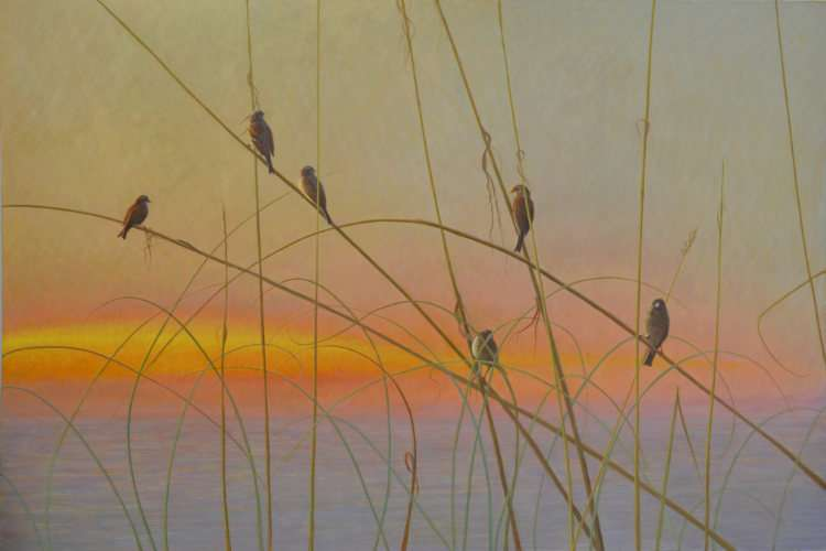 Six for Gold, six sparrows on sea oats. Egg tempera painting by Daniel Ambrose