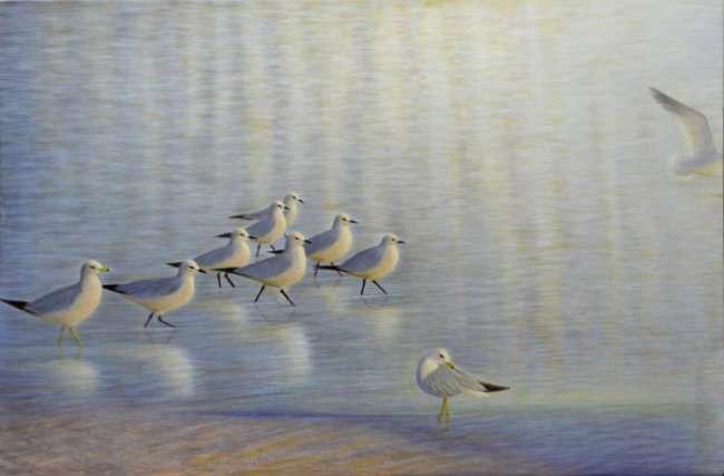 Ten gulls in water. Egg Tempera painting by Daniel Ambrose