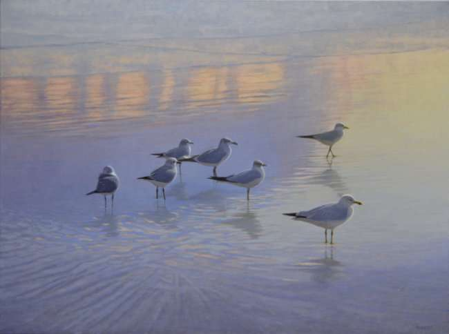 Light Keepers. Oil painting of 7 gulls on beach in a rainbow of colors, by Daniel Ambrose