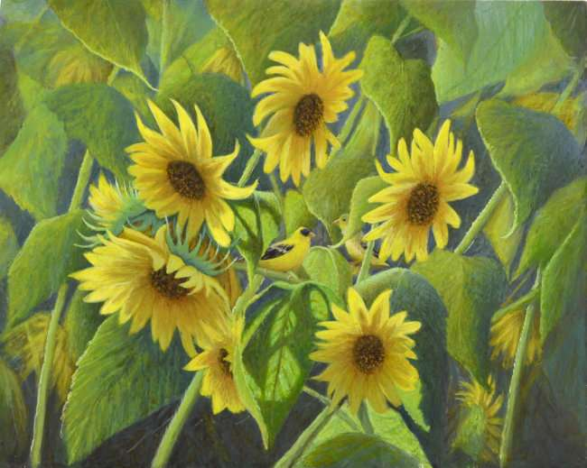 Egg tempera painting of sunflowers and meadowlark birds by Daniel Ambrose